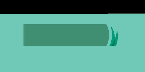FF III