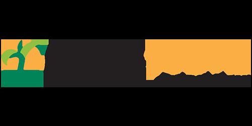 Force 10G HL